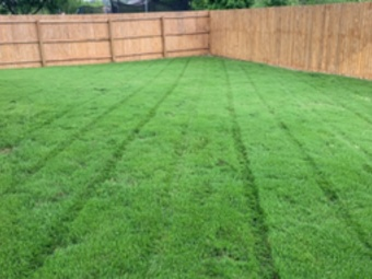 Lawn Mowing Contractor in San Antonio, TX, 78224
