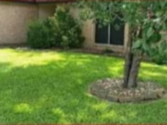 Lawn Mowing Contractor in Houston, TX, 77093