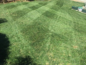 Lawn Mowing Contractor in Wingate, NC, 28174