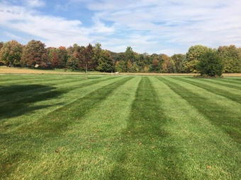 Lawn Mowing Contractor in Alliance, OH, 44601