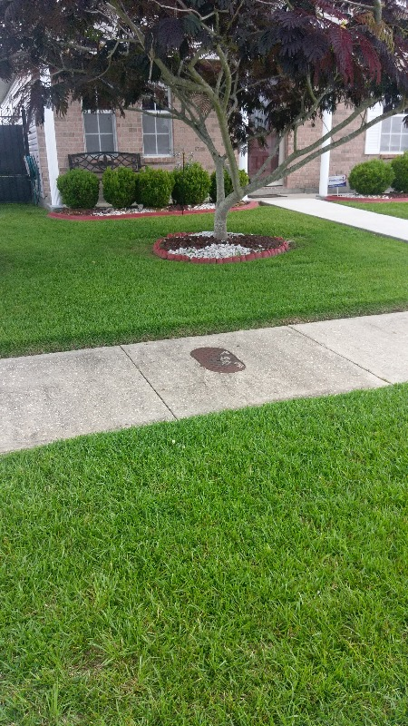 Lawn Mowing Contractor in New Orleans, LA, 70122