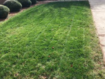 Lawn Mowing Contractor in Portsmouth, VA, 23703