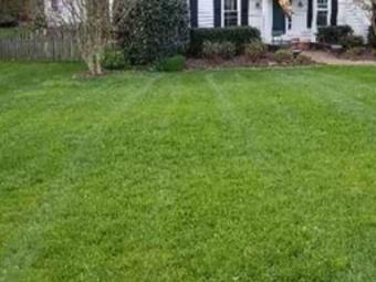 Lawn Mowing Contractor in Mechanicsville, VA, 23116
