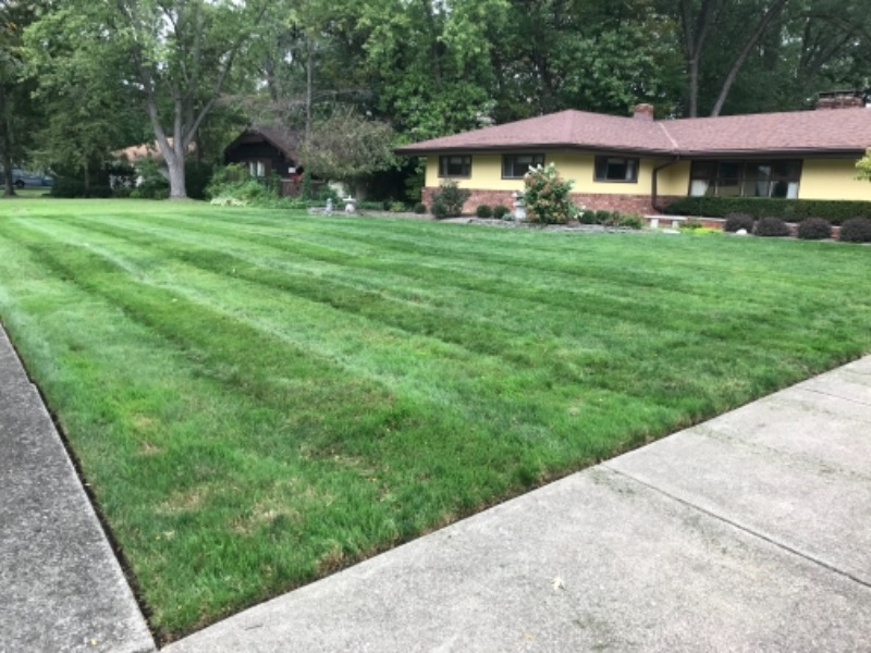 Lawn Mowing Contractor in Cleveland, OH, 44102