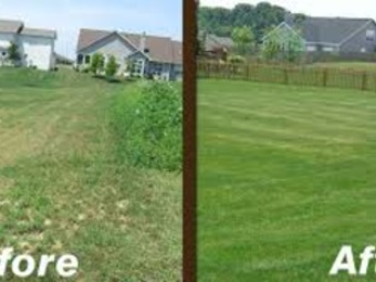 Lawn Mowing Contractor in Cincinnati, OH, 45204