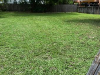 Lawn Mowing Contractor in Miami, FL, 33147