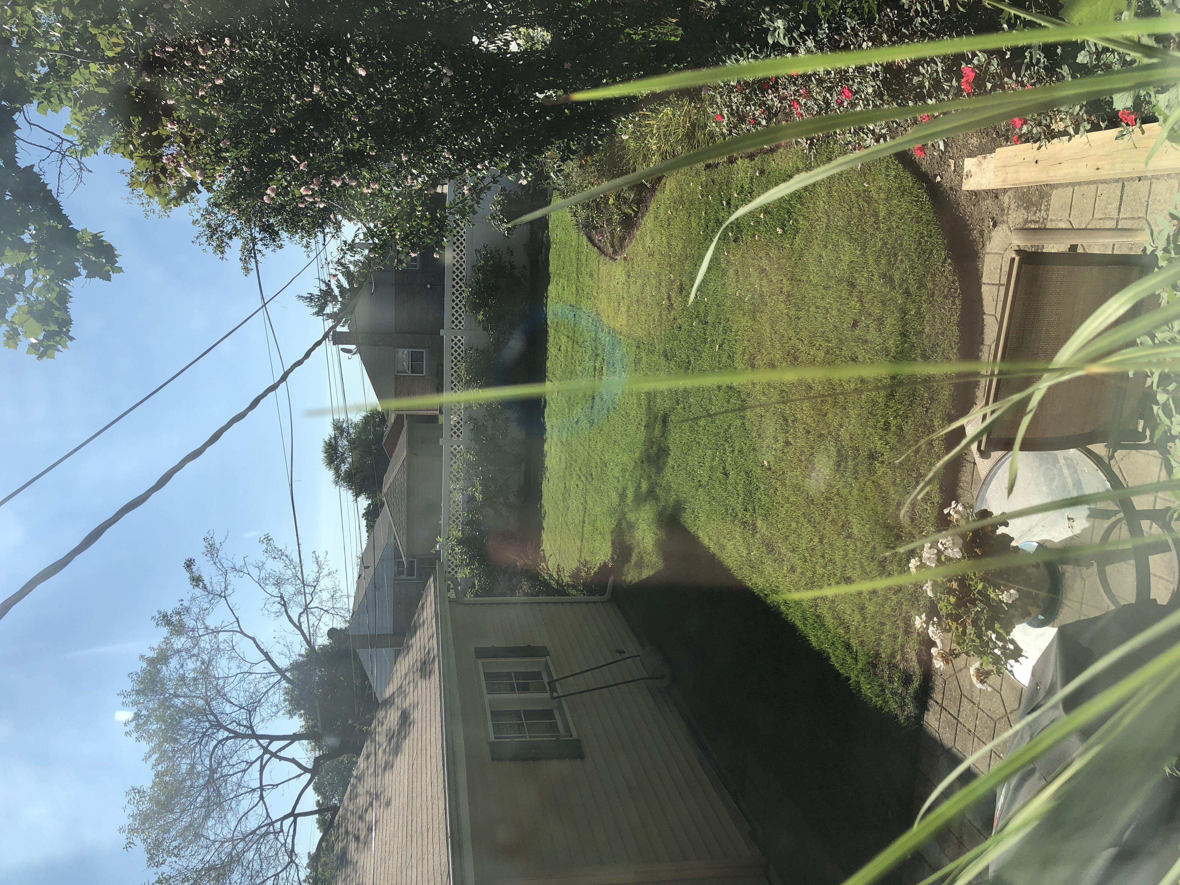 Lawn Mowing Contractor in Morton Grove, IL, 60053-2382