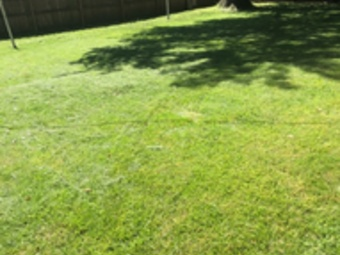 Lawn Mowing Contractor in Grain Valley, KS, 66048