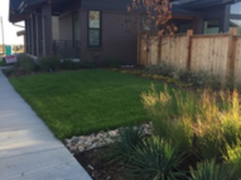 Lawn Mowing Contractor in Denver, CO, 80238