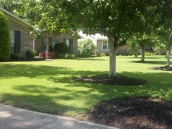 Lawn Mowing Contractor in Pensacola, FL, 32507