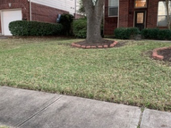 Lawn Mowing Contractor in Houston, TX, 77022