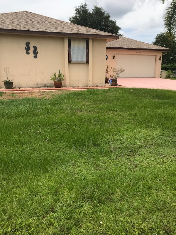 Lawn Mowing Contractor in Port Charlotte, FL, 33948