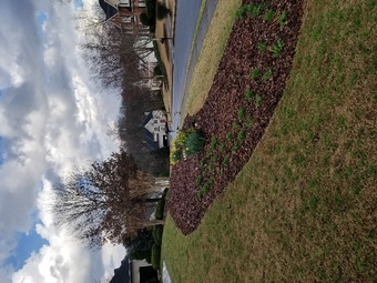 Lawn Mowing Contractor in Flowery Branch, GA, 30542