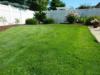 Lawn Mowing Contractor in Lutz, FL, 33647