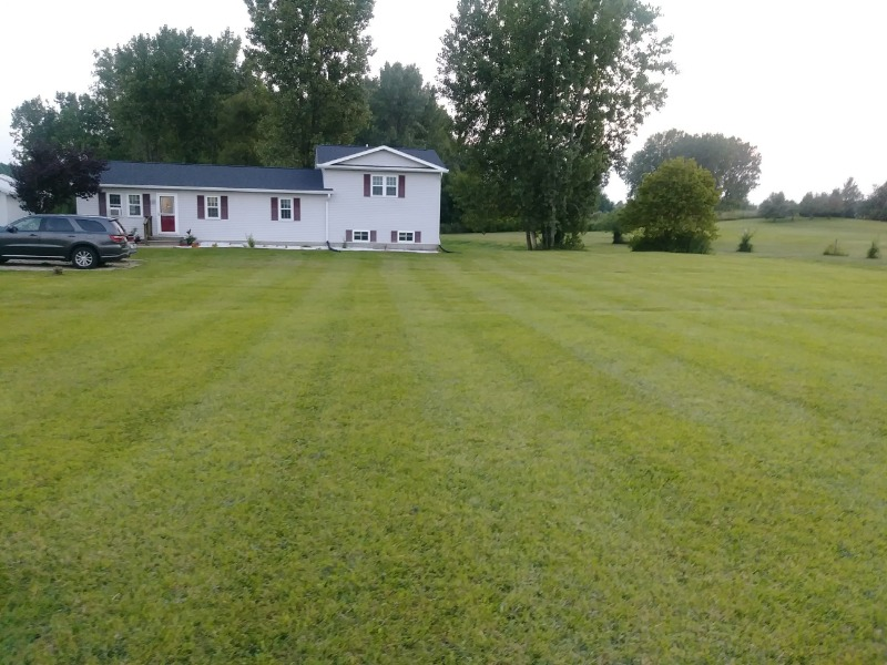 Lawn Mowing Contractor in Springfield, OH, 45504