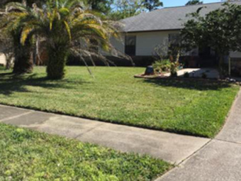Lawn Mowing Contractor in Orange Park, FL, 32073