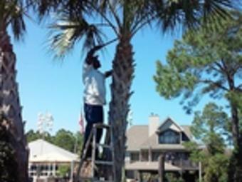 Lawn Mowing Contractor in Pensacola, FL, 32501