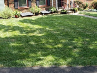 Lawn Mowing Contractor in St. Louis, MO, 63125