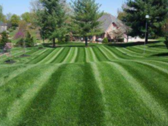 Lawn Mowing Contractor in Indianapolis, IN, 46219