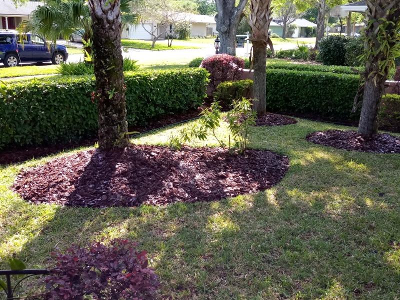Lawn Mowing Contractor in Montverde, FL, 34756