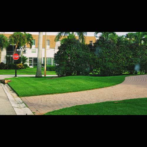 Lawn Mowing Contractor in Cape Coral, FL, 33993