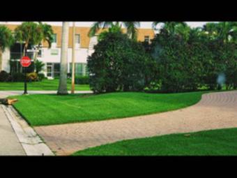 Lawn Mowing Contractor in Lehigh Acres, FL, 33993