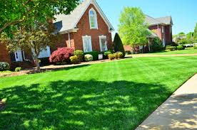 Lawn Mowing Contractor in Holley, NY, 14470