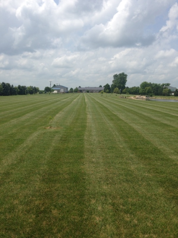 Lawn Mowing Contractor in Gardner, IL, 60424