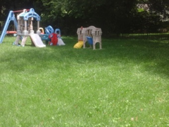Lawn Mowing Contractor in Baltimore, MD, 21208