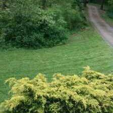 Lawn Mowing Contractor in New Kensington, PA, 15068