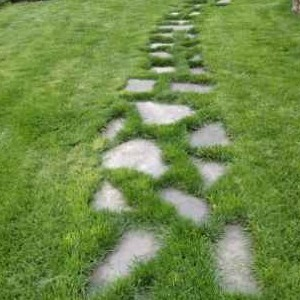 Lawn Mowing Contractor in Kansas City, MO, 64138