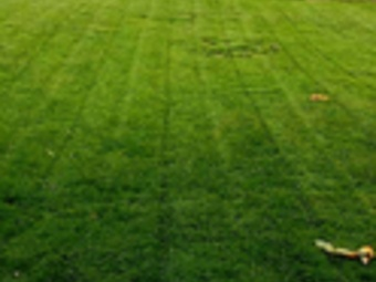 Lawn Mowing Contractor in Kansas City, MO, 64111