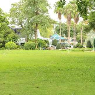 Lawn Mowing Contractor in Port Charlotte, FL, 33953