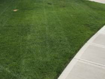 Lawn Mowing Contractor in Basehor, KS, 66007