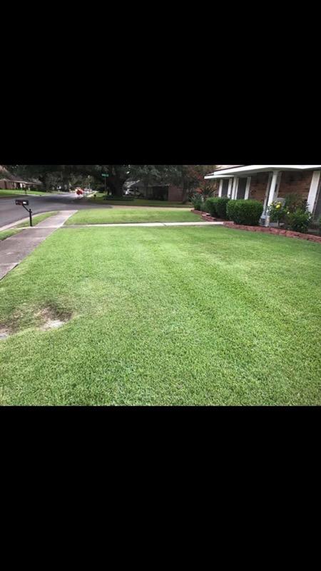 Lawn Mowing Contractor in Jefferson, LA, 70121