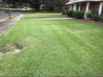 Lawn Mowing Contractor in Jefferson, LA, 70121