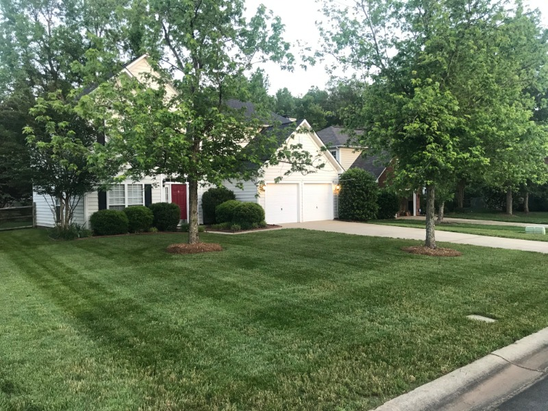 Lawn Mowing Contractor in Charlotte, NC, 28226