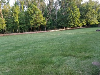 Lawn Mowing Contractor in Indianapolis, IN, 46236