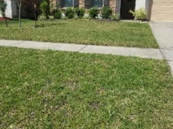 Lawn Mowing Contractor in Houston, TX, 77070