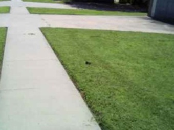 Lawn Mowing Contractor in Mounds, OK, 74047