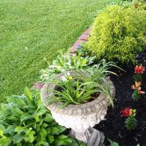 Lawn Mowing Contractor in Louisville, KY, 40219