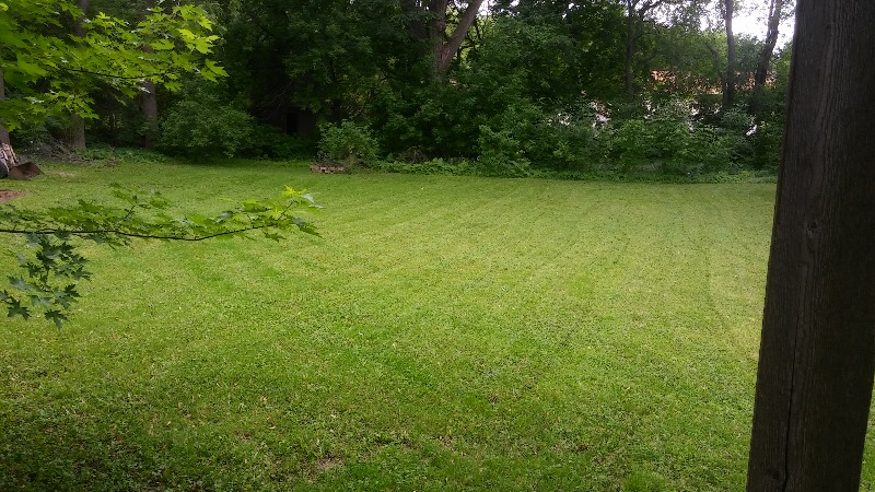 Lawn Mowing Contractor in Minneapolis, MN, 55418