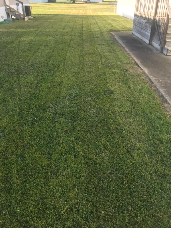Lawn Mowing Contractor in Little Rock, AR, 72209