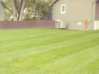 Lawn Mowing Contractor in Omaha, NE, 68154
