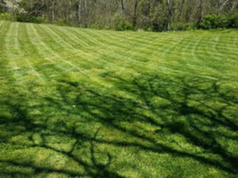 Lawn Mowing Contractor in Knoxville, TN, 37920