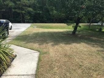 Lawn Mowing Contractor in Savannah, GA, 31405