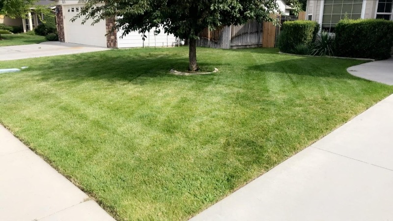 Lawn Mowing Contractor in Boise, ID, 83709