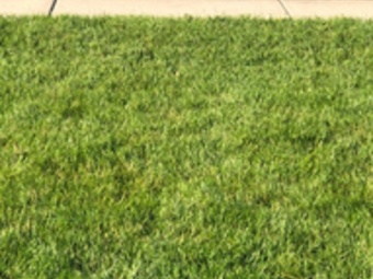 Lawn Mowing Contractor in Hartford, WI, 53027