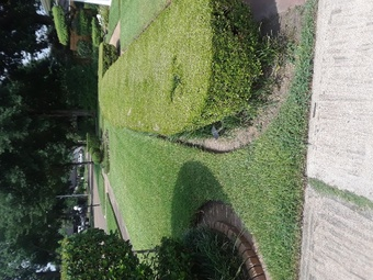 Lawn Mowing Contractor in Houston, TX, 77045