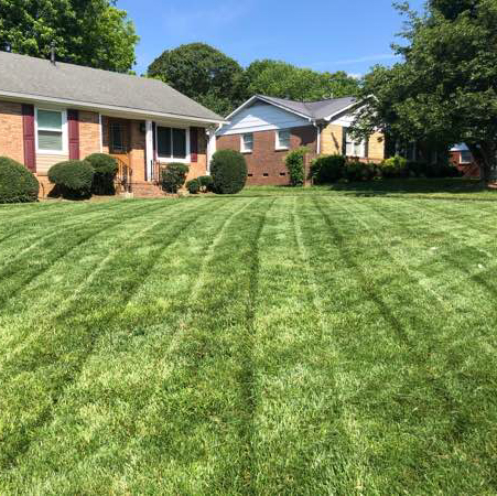 Lawn Mowing Contractor in Cornelius, NC, 28031